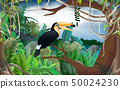 새, 조류, 밀림 50024230