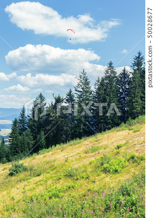 wonderful mountain landscape in summertime 50028677