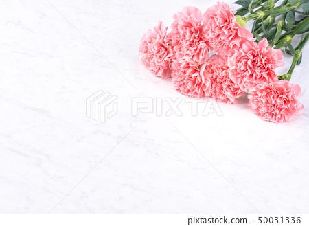 母親節康乃馨花香花束粉花瓶康乃馨頂視圖母親節康乃馨 50031336