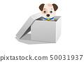 小狗 狗 狗狗 50031937