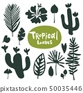 Tropical doodle leaves collection. Set of vector isolated silhouettes on white background 50035446