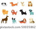 Dogs - collection of vector illustrations. Funny cartoons, different dog breeds, flat style 50035862