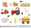 Set of farmer element. Vegetables and Farm animals. Vector illustrations. 50039313
