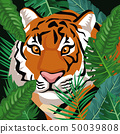 Tiger in the jungle 50039808