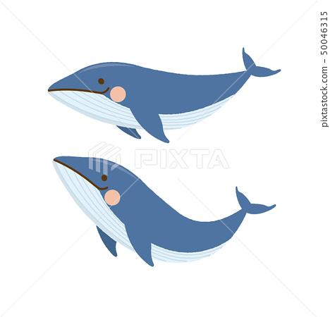 鯨魚 50046315