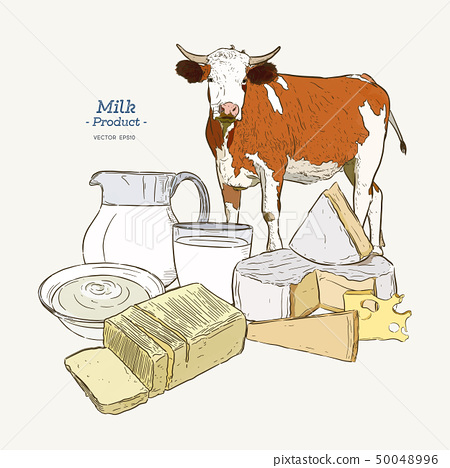 hand drawn vector sketch Dairy products set - 50048996