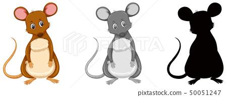 Set of rat character 50051247