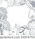 Vegetables and fruits frame hand draw 50054750