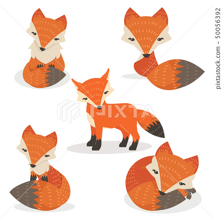 Cute foxes cartoon set in different poses 50056392