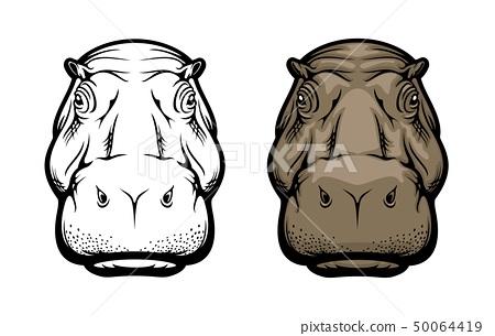 Hippopotamus, hippo wild African animal face icon 50064419