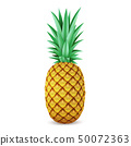Bright realistic pineapple isolated on white background 50072363