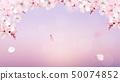 Blossoming light pink sakura flowers 50074852