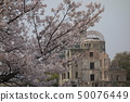 Spring Hiroshima, full bloom cherry blossoms and the atomic bomb dome 50076449