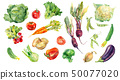 Watercolor painted collection of vegetables. Fresh colorful veggies background 50077020