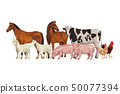 horse cow pig goat rooster hen 50077394