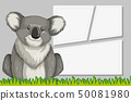 Koala in note template 50081980