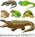 Set of reptile animal 50082071