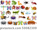 Set of insect character 50082309