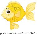 A goldfish on white background 50082675