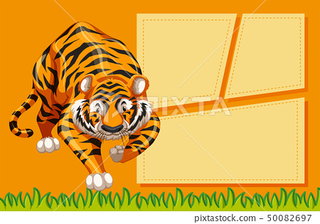 tiger with a frame 50082697