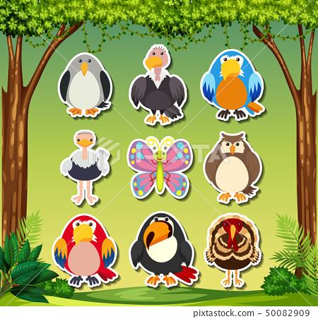 Set of animal sticker 50082909