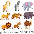 Set of wild animal 50083179