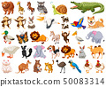 Set of wild animals 50083314
