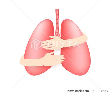 Hands embrace human lung. 50084665