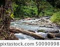 A peaceful river in Papua New Guinea 50090998