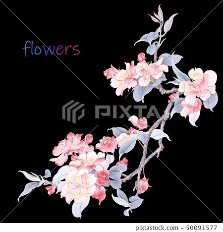 優雅的水彩花卉 50091577