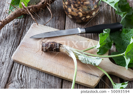Preparation of burdock tincture from fresh burdock 50093594