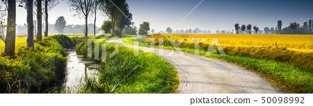 original country rural landscape 50098992