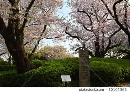 橫濱·山手公園 50105368