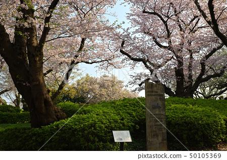 โยโกฮาม่า ・ สวนยามาเตะ 50105369