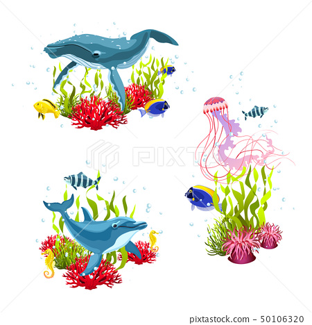 sea life compositions 50106320