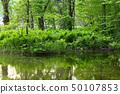 初夏的水邊淡水 50107853