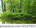 初夏的水邊淡水 50107854