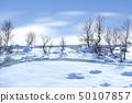 冬天太陽冬天雪表面 50107857