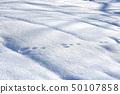 早晨雪表面雪表面 50107858