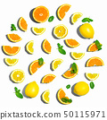 Collection of oranges and lemons 50115971