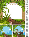 Background scenes with raccoons and paper 50125853