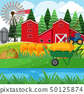 Dried hay and red barns in the farmyard 50125874