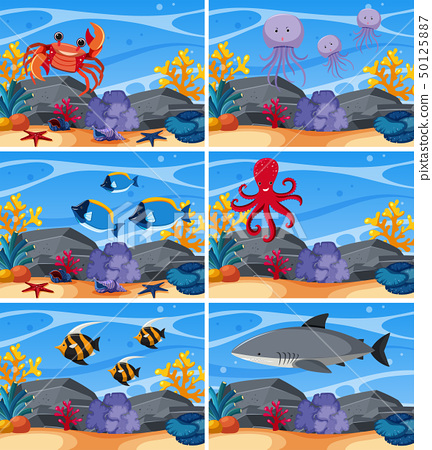 Six underwater scenes with sea animals 50125887
