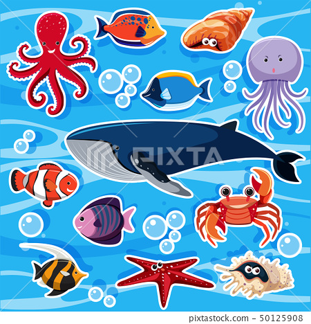 Sticker template with many sea animals 50125908