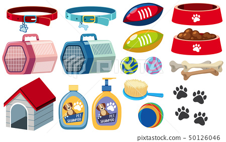 Different dog accessories on white background 50126046