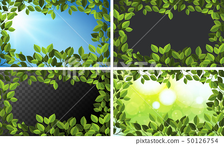 Background templates with green leaves 50126754