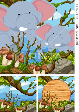Elephants in the forest and wooden sign 50127011