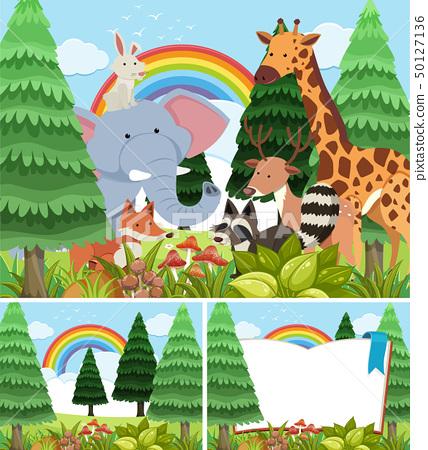 Three scenes of forest with wild animals 50127136