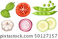 different types of vegetables on white background 50127157