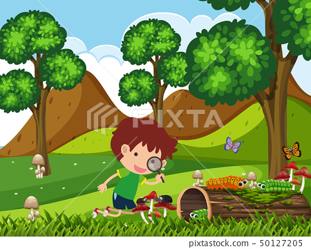Boy looking at bugs in the park at daytime 50127205